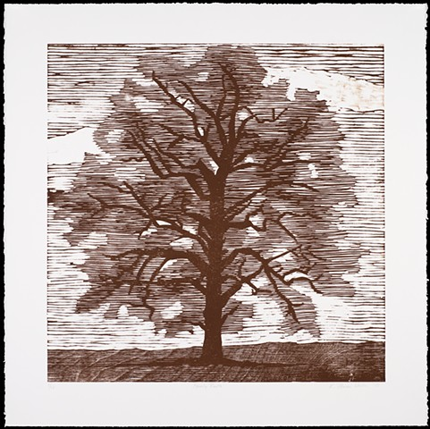 One layer woodblock print by Kristin Powers Nowlin of an oak tree.
