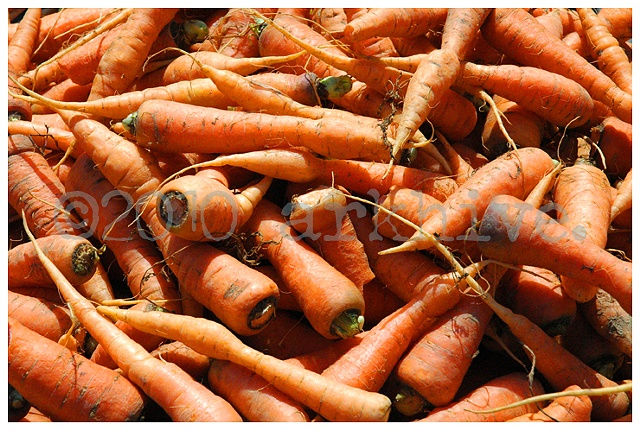 san francisco carrots