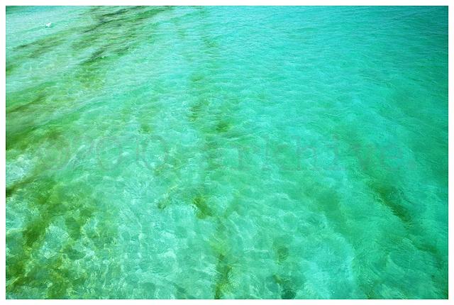 beach florida beaches gulf coast