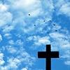 'cross + birds II'