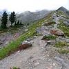 Railroad Grade Trail, Mt. Baker