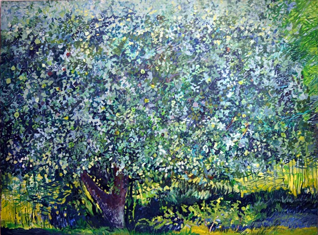 Apple Tree Summer