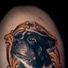 """Brian's Boston Terrier """"Duke"""""""