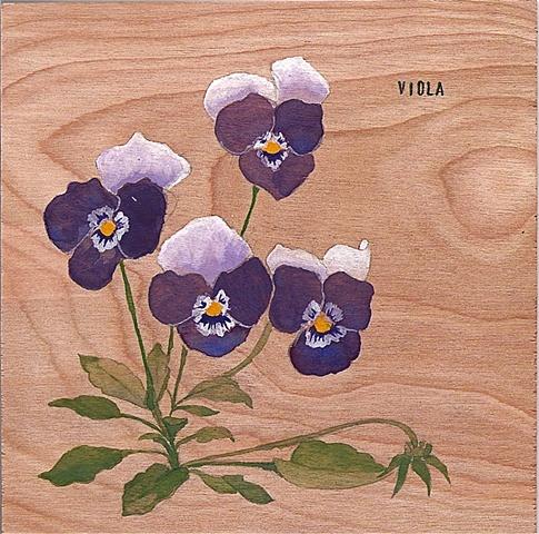 Viola on Wood