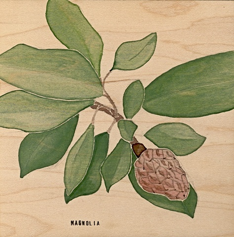 Magnolia on Wood