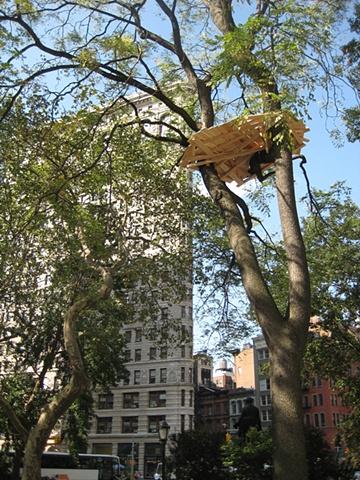 Visiting Madison Square Park - Tadashi Kawamata's Tree Huts