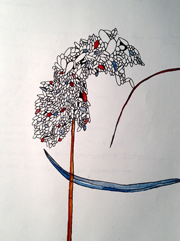 Warbletree