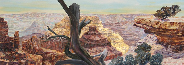 Environmental art, grand canyon national park, fine art