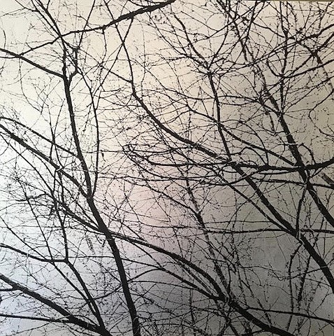"""Branches 1; Silver"""