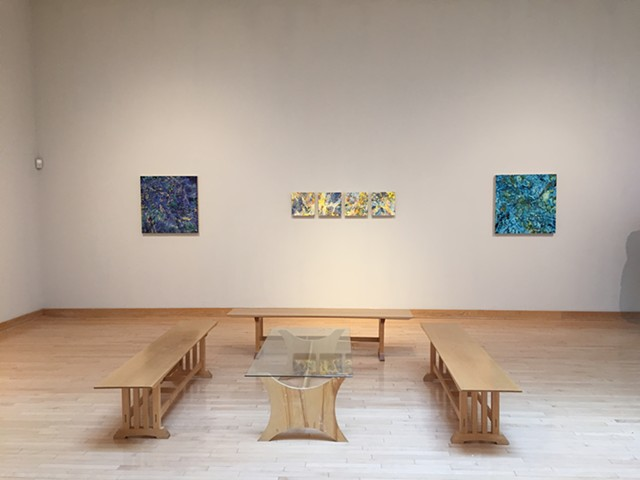 Field Vision, Installation View