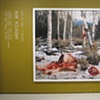 """America Now, installation view of title wall, Laura McPhee, """"Quartered Rocky Mountain Elk, Milky Creek, White Cloud Mountains, Idaho,"""" 2004"""