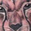 Madeline's Leopard