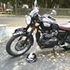 2007 Triumph