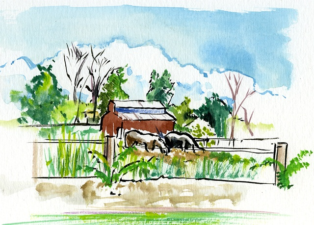 Rural Country