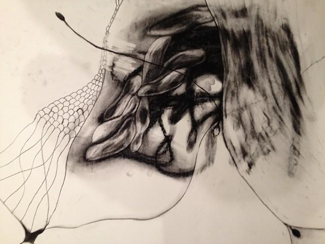 Untitled 15