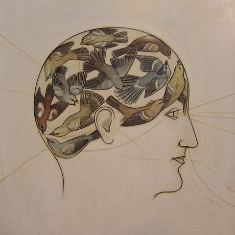 Phrenology Of A Bird Brain