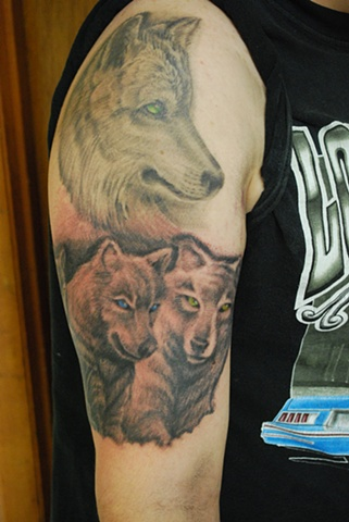 dave zobel wolves
