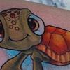 squirtle de turtle