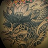 coverup with lotus and coyfish