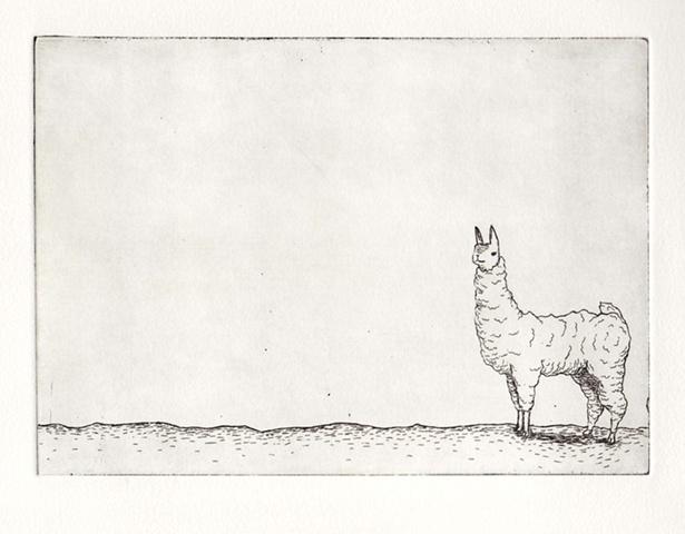 Llama II