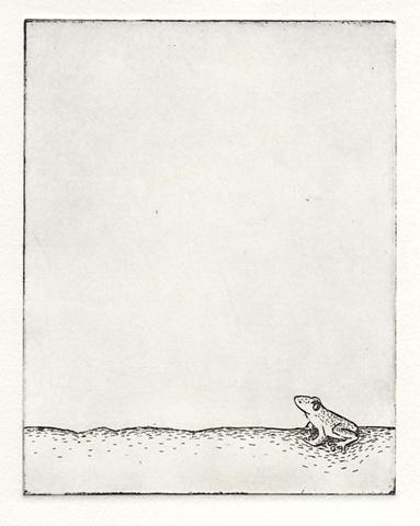 Frog II