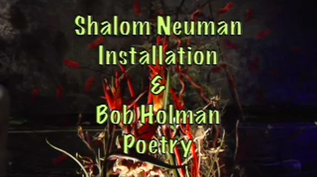 Bob Holman Poetry for Toxic Paradise Installation