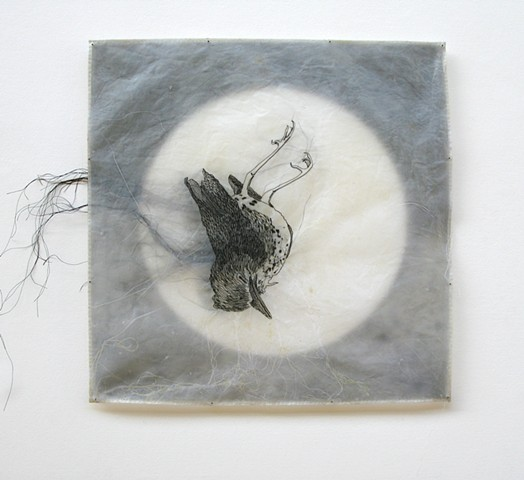 Stitched/Drawings