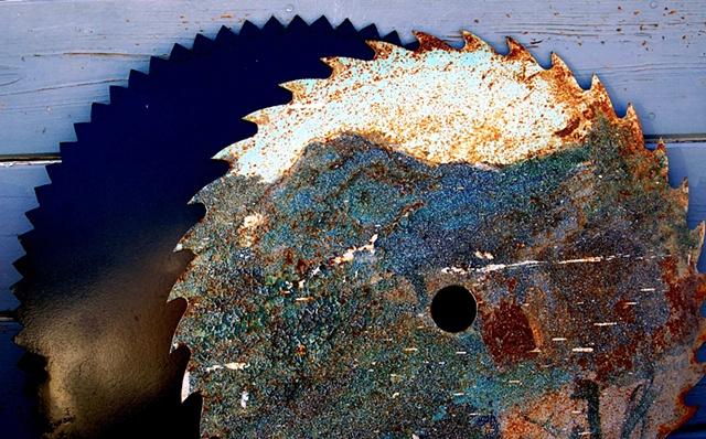 Rusting Saws, Bodega Bay, CA (1)