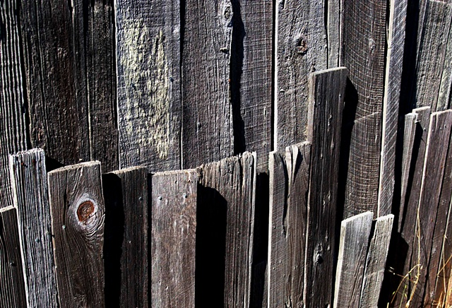 Weathered Fence, Bodega, CA