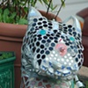 Mosaic Cat off Ashby