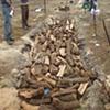 Pit Fire Process #2