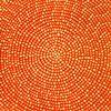 Mint Cosmos on Tangerine Field