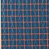 Askewed Orange Screen/Blue Ribbons