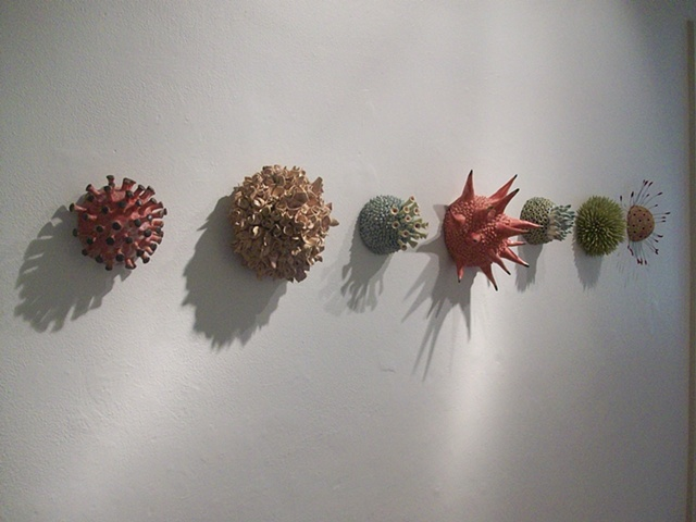 Botanicals, gallery view