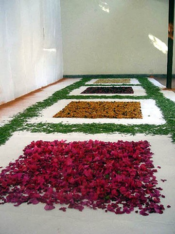 residency, Sanskriti foundation, Delhi, flowers, Mughal, garden, sand