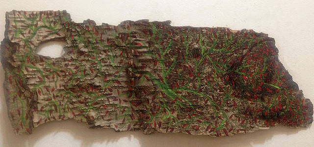 Birch Bark Drawing #30