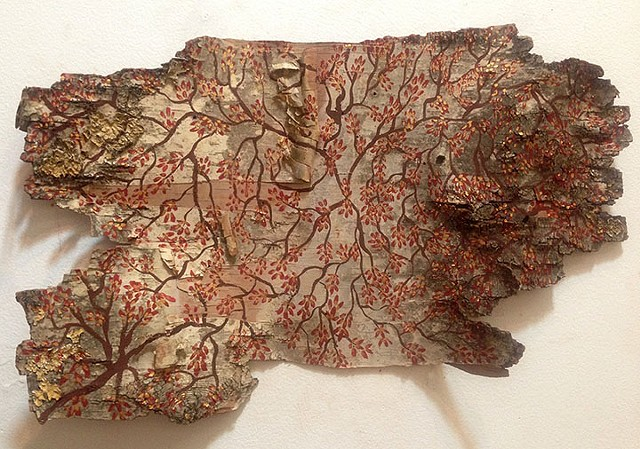 Birch Bark Drawing #11