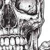 Pagan Skull