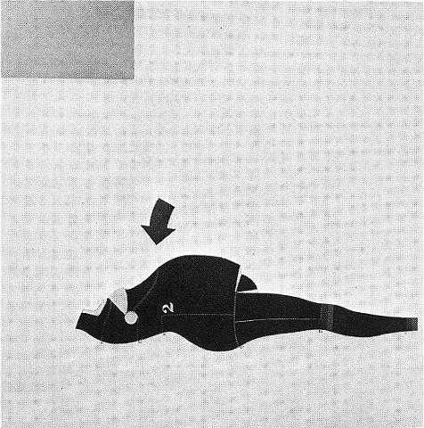 Figure Study, 1962