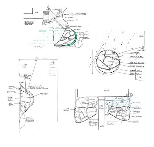 bona terra dc landscape architect design installation garden raingarden landscaping