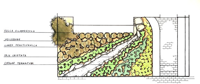 bona terra dc landscape architect design installation garden stream bed