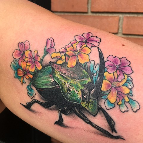 tattoo, color tattoo, dung beetle