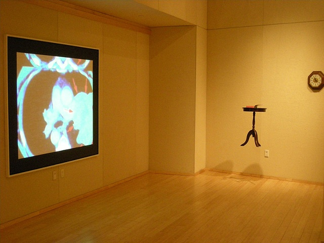 Multimedia Installation