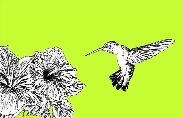 Hummingbird, Avian Series #3