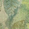 Croton leaf scarf- green