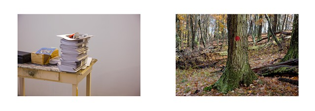Diptych: University of Maryland, Masters of Fine Arts Brochures/Trail Blaze, Lost River State Park, West Virginia.