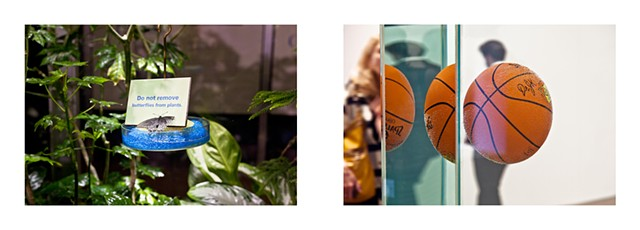 Diptych: The Butterfly Conservatory, American Natural History Museum, 2015/Jeff Koons, Whitney Museum 2014.