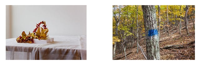 Diptych: American University Studio (Gillian Escobar, student)/Trail Blaze, Lost River State Park, West Virginia (blue rectangle).