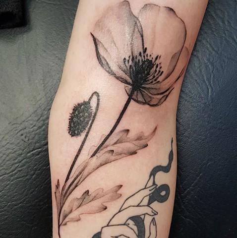 X-ray poppy tattoo by Sandra Bubrul