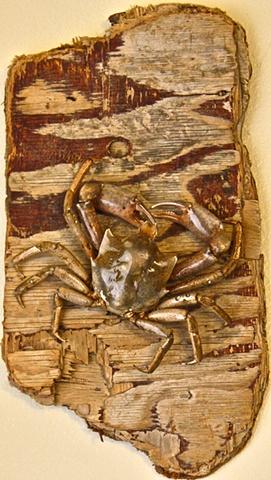 Kelp Crab Art Beach Art, pugettia producta